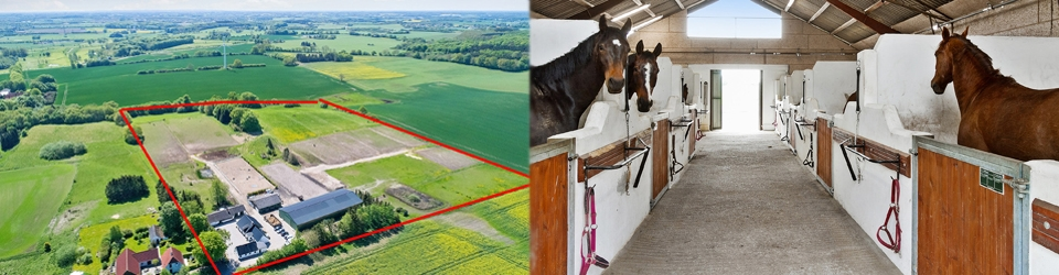 Hesteejendom ridehal Sjælland