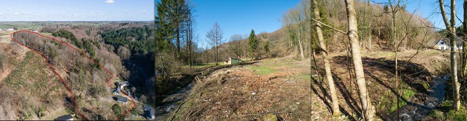Byggegrund egen skov og sø - Vejle